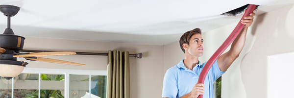 Air Duct Cleaning Fremont Best Carpet Cleaners Serving