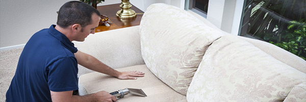 Upholstery Cleaning Fremont Best Carpet Cleaners Serving